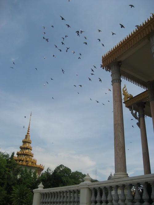 Jacs_cambodia_035