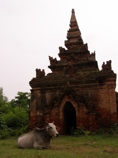 Burma_464